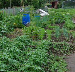 North Preston Allotment Association