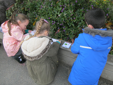 Year 2 Outdoor Classroom Day