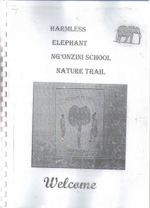 Garlinge Pupil's Fundraising for N'gonzini School - Garlinge Primary School